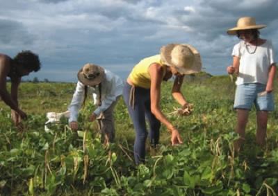 Martina: credito, terre e formazione per sostenere i giovani agricoltori