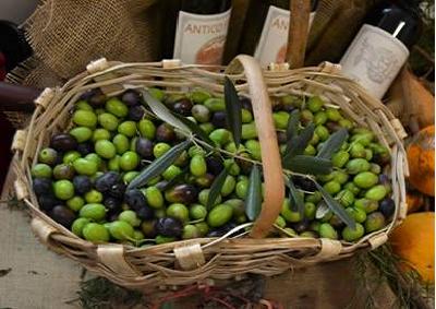 Olio extravergine di oliva della Liguria elisir di lunga vita