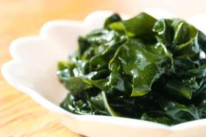alghe-food-marcopolonews