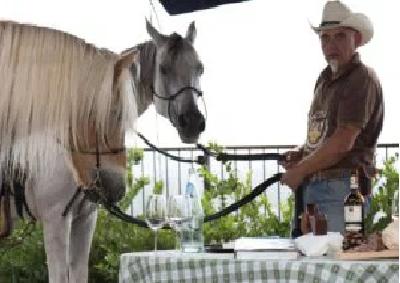 Soave: quando il cavallo fa la differenza