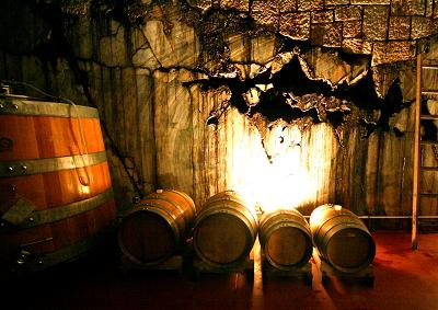 Il vino Terrano prodotto bandiera del Carso transfrontaliero