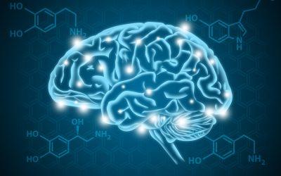 Facciamo chiarezza sulla serotonina