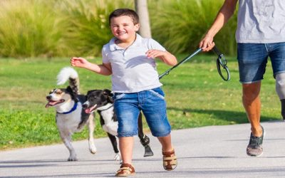 Dubai mum's new photo project to capture people and pets of determination