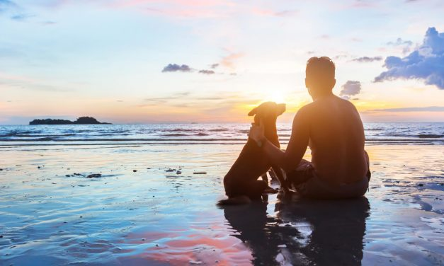 Take your dog on this dreamy beach staycation