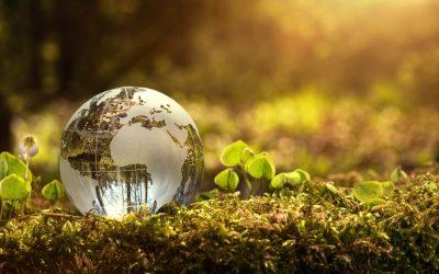 New Atlas reveals climate-critical rangelands cover half the World's